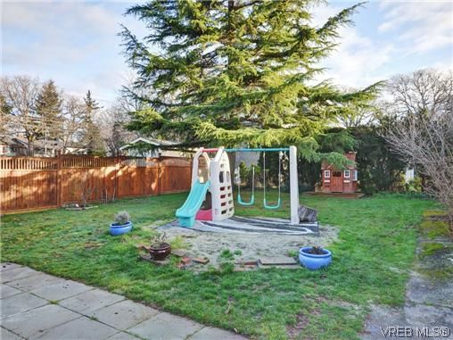 Photo 18: Photos: 4091 Borden St in VICTORIA: SE Lake Hill House for sale (Saanich East)  : MLS®# 720229