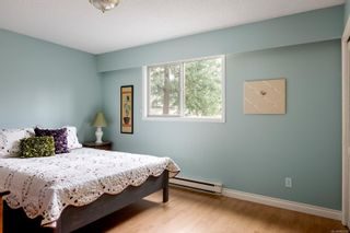 Photo 20: 4211 Lynnfield Cres in : SE Mt Doug House for sale (Saanich East)  : MLS®# 865959