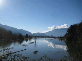 """Photo 14: 7 1204 MAIN Street in Squamish: Downtown SQ Townhouse for sale in """"Aqua"""" : MLS®# R2221576"""