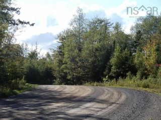 Photo 3: Lot 4 Rod MacKay Road in Central West River: 108-Rural Pictou County Vacant Land for sale (Northern Region)  : MLS®# 202124895