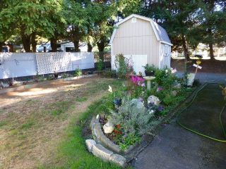 """Photo 20: 31 2305 200 Street in Langley: Brookswood Langley Manufactured Home for sale in """"Cedar Lane"""" : MLS®# R2223523"""