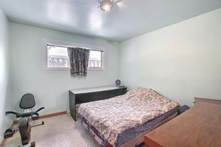 Photo 10: 2335 53 Avenue SW in Calgary: North Glenmore Park Detached for sale : MLS®# A1083978