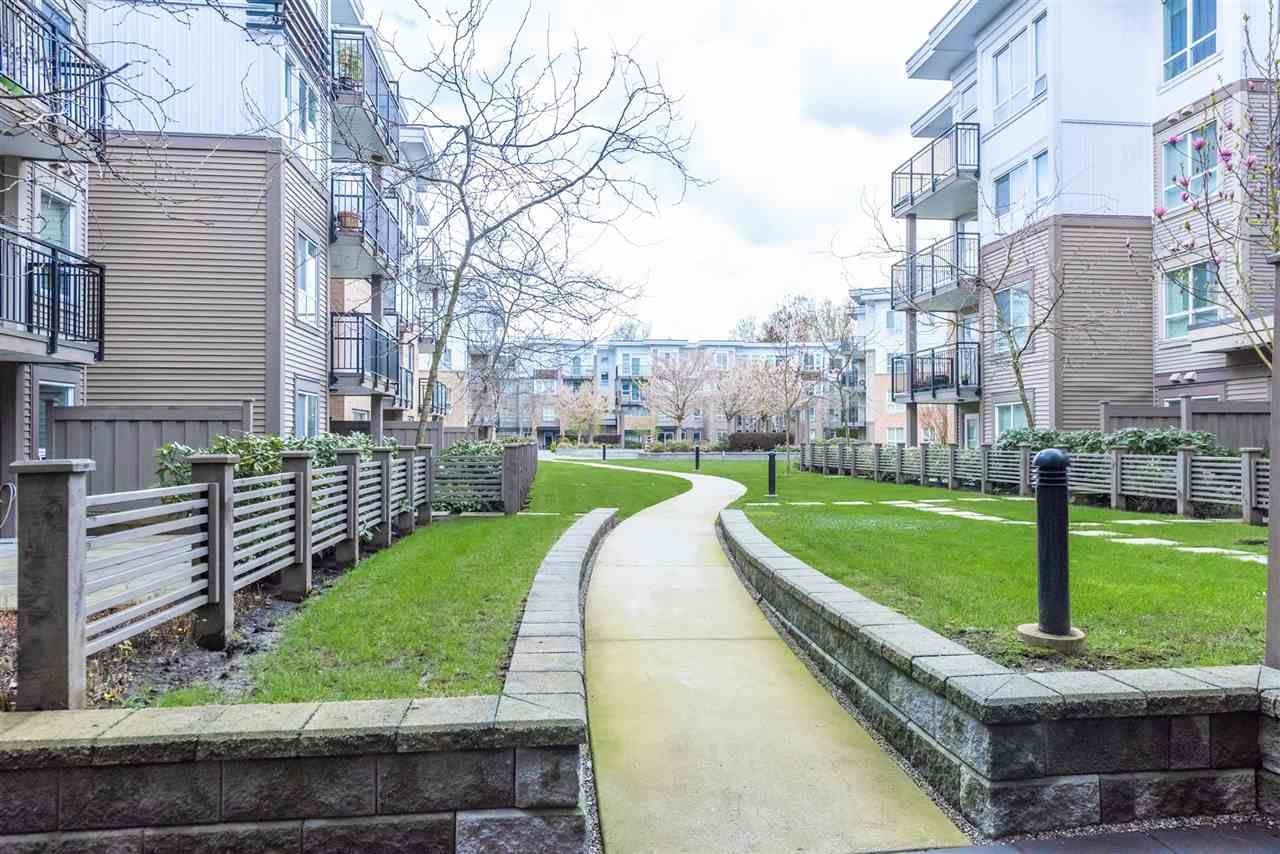 "Photo 13: Photos: 206 9399 TOMICKI Avenue in Richmond: West Cambie Condo for sale in ""CAMBRIDGE PARK"" : MLS®# R2157333"