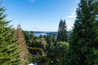 Photo 60: 3273 Telescope Terr in : Na Departure Bay House for sale (Nanaimo)  : MLS®# 865981