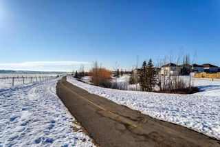 Photo 39: 134 Coverton Heights NE in Calgary: Coventry Hills Detached for sale : MLS®# A1071976