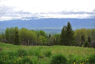 """Photo 5: DECEPTION LAKE FOREST SERVICE ROAD: Telkwa Land for sale in """"WOODMERE"""" (Smithers And Area (Zone 54))  : MLS®# R2398092"""