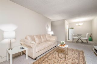 Photo 5: 404 9880 MANCHESTER DRIVE in Burnaby: Cariboo Condo for sale (Burnaby North)  : MLS®# R2502336