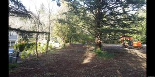 Photo 9: 2 759 Helvetia Cres in : SE Cordova Bay Land for sale (Saanich East)  : MLS®# 873250