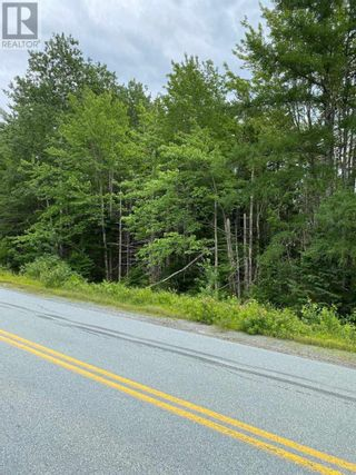 Photo 5: Lot Italy Cross Road in Crousetown: Vacant Land for sale : MLS®# 202117994