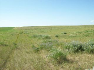 Photo 19: Eagle Creek Acreage 80 Acres in Asquith: Lot/Land for sale : MLS®# SK863384