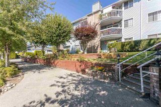 "Photo 1: 117 11510 225 Street in Maple Ridge: East Central Condo for sale in ""RIVERSIDE"" : MLS®# R2541802"