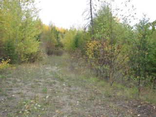 Photo 26: 80 Acres Creighton Valley Road, in Lumby: Vacant Land for sale : MLS®# 10239894
