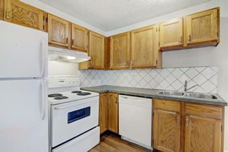 Photo 16: 152 Castlebrook Rise NE in Calgary: Castleridge Semi Detached for sale : MLS®# A1128944
