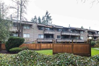 """Photo 3: 315 1195 PIPELINE Road in Coquitlam: New Horizons Condo for sale in """"Deerwood Court"""" : MLS®# R2147039"""