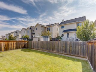 Photo 39: 17 ROYAL ELM Way NW in Calgary: Royal Oak Detached for sale : MLS®# A1034855