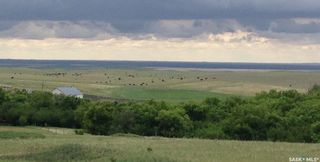 Photo 4: Diamond D Land and Cattle Ltd. in Lacadena: Farm for sale (Lacadena Rm No. 228)  : MLS®# SK833271