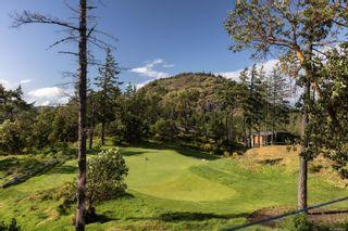 Photo 42: 1476 Pebble Pl in : La Bear Mountain House for sale (Langford)  : MLS®# 875627