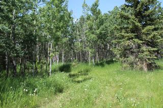 Photo 13: 25255 Bearspaw Place in Rural Rocky View County: Rural Rocky View MD Land for sale : MLS®# A1013795