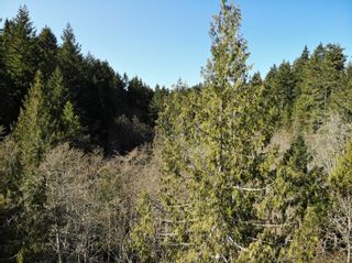Main Photo: Lot A North End Rd in : GI Salt Spring Land for sale (Gulf Islands)  : MLS®# 871061