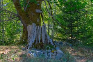 Photo 46: 3775 Mountain Rd in : ML Cobble Hill House for sale (Malahat & Area)  : MLS®# 886261