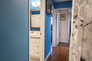 Photo 17: 3137 Doverville Crescent SE in Calgary: Dover Semi Detached for sale : MLS®# A1050547