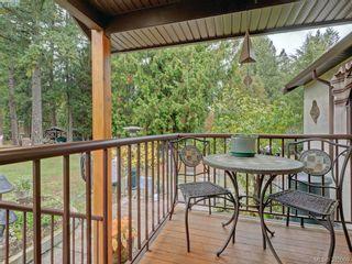 Photo 17: 5450 Alderley Rd in VICTORIA: SE Cordova Bay House for sale (Saanich East)  : MLS®# 773792