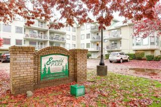 Photo 18: 109 19236 FORD Road in Pitt Meadows: Central Meadows Condo for sale : MLS®# R2336130