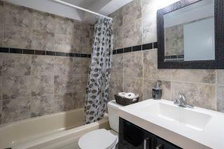 Photo 18: 3309 44A Street in Edmonton: Zone 29 House for sale : MLS®# E4229160