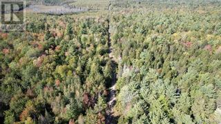 Photo 4: - Splan Pond in St. Stephen: Vacant Land for sale : MLS®# NB059945