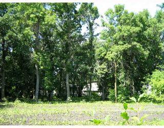 Photo 5: 3485 HENDERSON Highway in ESTPAUL: Birdshill Area Residential for sale (North East Winnipeg)  : MLS®# 2917590