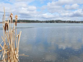 """Photo 9: 2598 NORWOOD Road in Quesnel: Bouchie Lake House for sale in """"BOUCHIE LAKE"""" (Quesnel (Zone 28))  : MLS®# N209222"""
