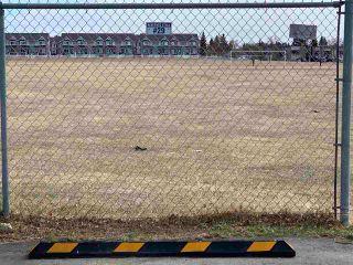 Photo 21: 324 15105 121 Street in Edmonton: Zone 27 Condo for sale : MLS®# E4239504