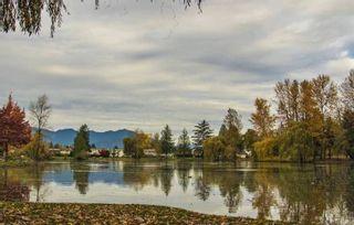 "Photo 11: 46201 GREENWOOD Drive in Chilliwack: Sardis East Vedder Rd House for sale in ""SARDIS PARK"" (Sardis)  : MLS®# R2439338"