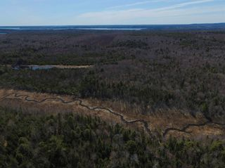Photo 6: 141 Scotch Lake Road in Georges River: 204-New Waterford Vacant Land for sale (Cape Breton)  : MLS®# 202102227
