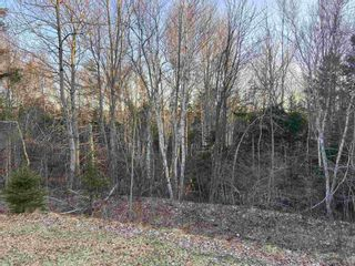 Photo 4: Lot 11-2 Little Harbour Road in Little Harbour: 108-Rural Pictou County Vacant Land for sale (Northern Region)  : MLS®# 202106494