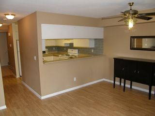 """Photo 22: 68 202 LAVAL Street in """"FONTAINE BLEAU"""": Home for sale : MLS®# V1002684"""