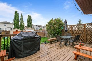 Photo 13: 267 Mt Apex Green SE in Calgary: McKenzie Lake Detached for sale : MLS®# A1121866