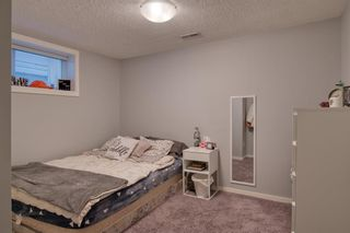 Photo 34: 113 Copperstone Circle SE in Calgary: Copperfield Detached for sale : MLS®# A1103397
