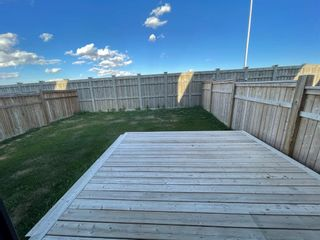 Photo 22: 156 Masters Crescent SE in Calgary: Mahogany Detached for sale : MLS®# A1142634