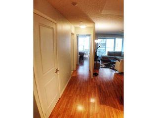 Photo 9: 7 15 Stafford Street in Toronto: Niagara Condo for lease (Toronto C01)  : MLS®# C3048686