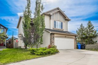 Main Photo: 379 New Brighton Place SE in Calgary: New Brighton Detached for sale : MLS®# A1148397