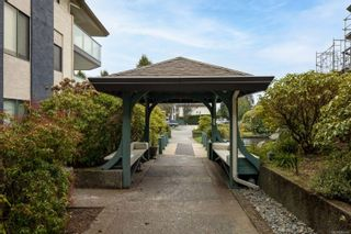 Photo 17: 202 3900 Shelbourne St in : SE Cedar Hill Condo for sale (Saanich East)  : MLS®# 866490