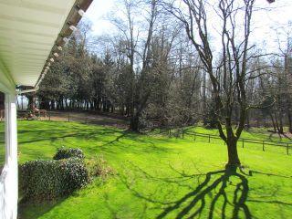 Photo 13: 25170 4 AV in Langley: Otter District House for sale : MLS®# F1441032
