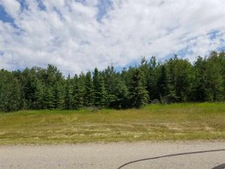 Photo 5: #43-25527- Twp Road 511A Road: Rural Parkland County Rural Land/Vacant Lot for sale : MLS®# E4226843