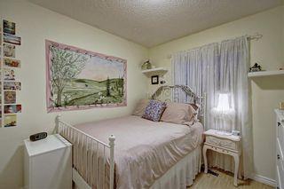 Photo 18: 131 MT APEX Green SE in Calgary: McKenzie Lake Detached for sale : MLS®# C4275506