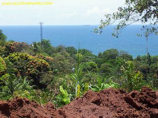 Photo 4: Oceanview land for sale near Portobelo