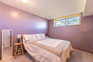 Photo 16: 5219 Whitehorn Drive NE in Calgary: Whitehorn Detached for sale : MLS®# A1149729