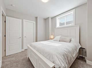 Photo 39: 646 24 Avenue NW in Calgary: Mount Pleasant Semi Detached for sale : MLS®# A1082393