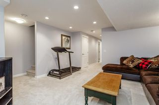Photo 26: 163 EVANSBOROUGH Crescent NW in Calgary: Evanston Detached for sale : MLS®# A1012239