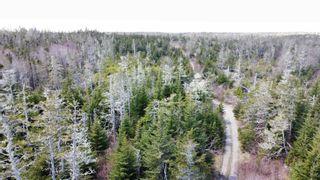 Photo 19: Lot Port Latour Road in Upper Port La Tour: 407-Shelburne County Vacant Land for sale (South Shore)  : MLS®# 202111745
